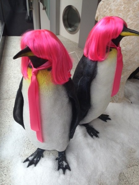 Pretty Penguins!