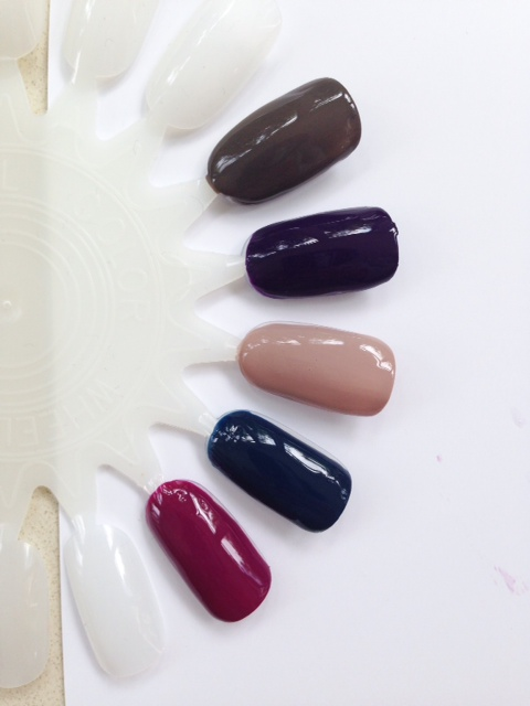 Estee Lauder Pure Color Nail Lacquer Autumn 2014